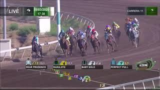 Vidéo de la course PMU PREMIO FE EN TI