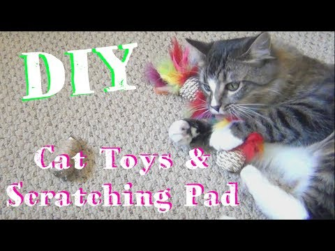 DIY Cat Toys ♥ And Scratching Pad