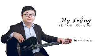Hạ Trắng (St Trịnh Công Sơn) guitar solo | Mèo Ú Guitar