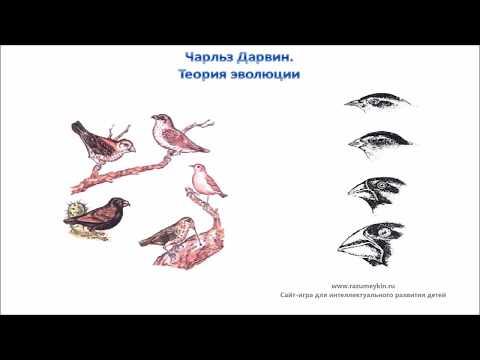 Эволюционное учение. Яблоков ., Юсуфов .