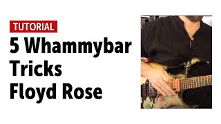 5 Whammybar Tricks Floyd Rose