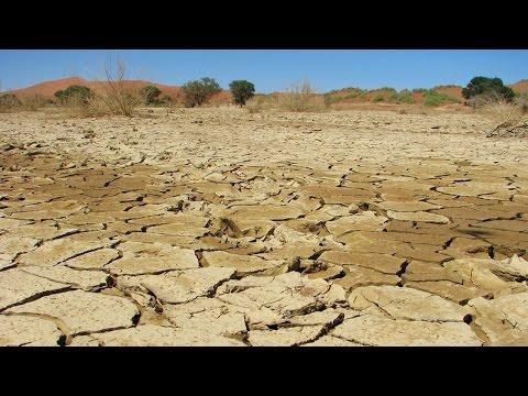 Massive Drought Devastates Africa