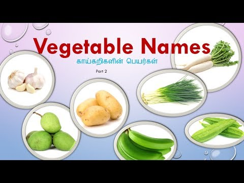 Learn Tamil Through English| Vegetable Names With Pictures  - காய்கறிகள்