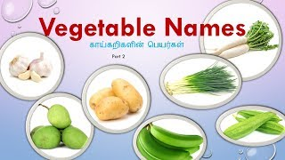 Learn Tamil Through English  Vegetable names with Pictures  - காய்கறிகள்