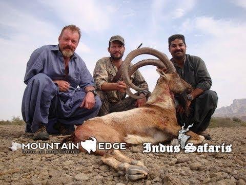 Hunting in Pakistan 2011