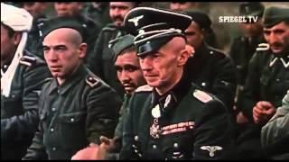 Spiegel TV: Von Krieg zu Krieg - Der Nahe Osten (2011)