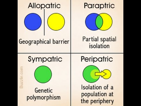 4 Basic Modes Of Speciation
