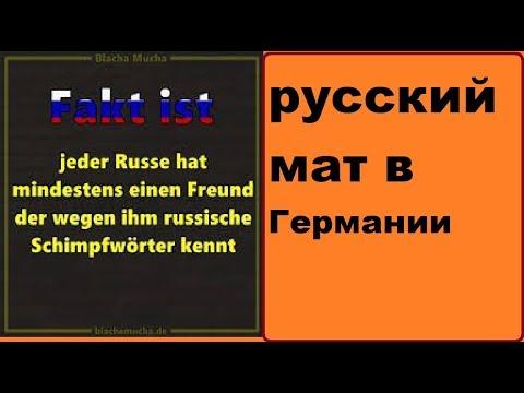 #жизньвГермании русский мат и русское происхождение есть ли плюсы?