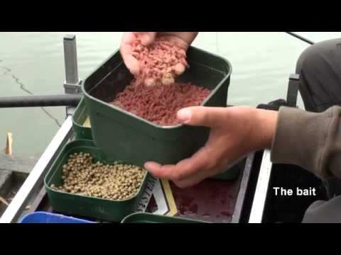 Fishing Tips on waggler for crucians and tench