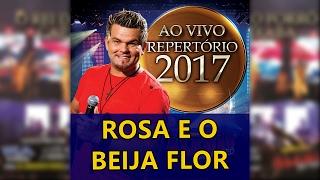 ALEMÃO DO FORRÓ - 17 A ROSA E O BEIJA FLOR [REPERTÓRIO NOVO 2017]