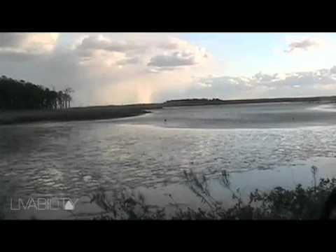 Blackwater National Wildlife Refuge near Cambridge, MD
