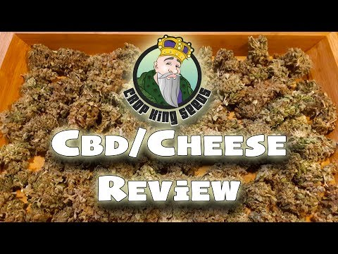 CBD/CHEESE AUTOFLOWER – STRAIN REVIEW – Seeds by CROP KING SEEDS – SMOKE SHOW