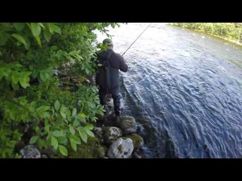 Crazy ride down the Lakselv river with a salmon on 20kg+ - Uncut edition