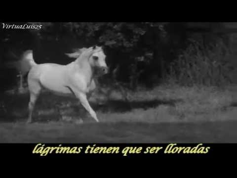 The Rolling Stones Wild Horses subtitulado Español