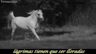 Wild Horses The Rolling Stones  subtitulado Español