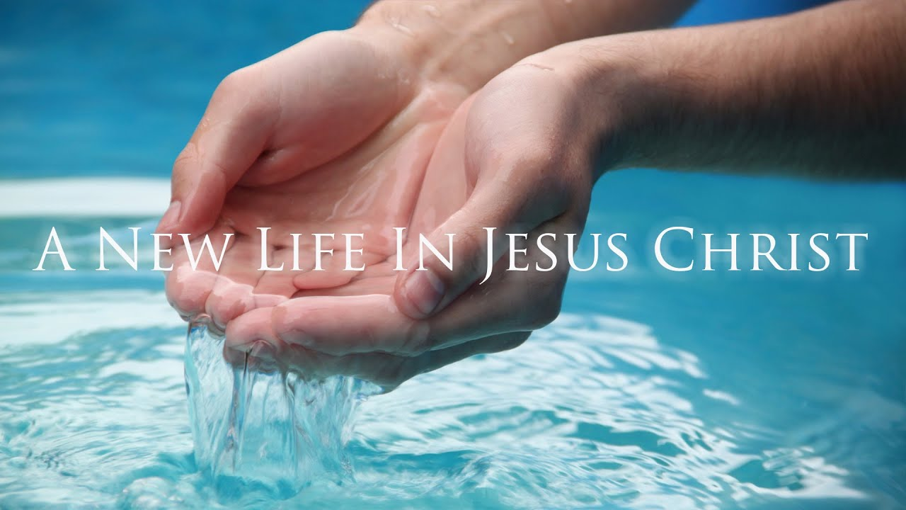 Image result for a new life in christ jesus