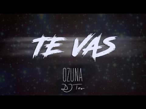 Te VasDJ TAO Ozuna Remix