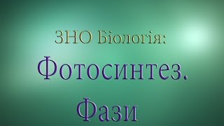 ЗНО Біологія  Фотосинтез