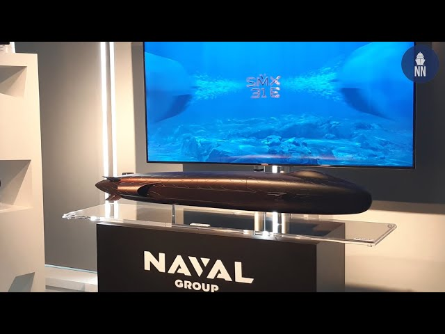 Euronaval: Interview with Pierre Eric Pommellet, CEO of Naval Group