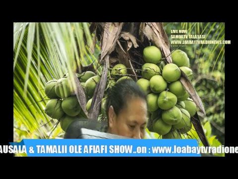 TAUSALA & TAMALII  Tues12June2018 www.loabaytvradionews.com SAMOATV & SAMOA RADIO Live Stream