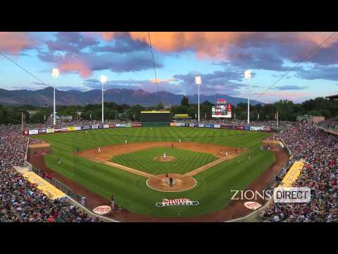 Salt Lake Bees - Speaking on Business