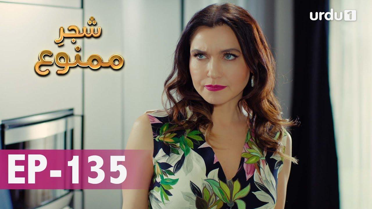 Download Shajar-e-Mamnu   Episode 135   Turkish Drama    Forbidden Fruit   Urdu Dubbing   16 June 2021