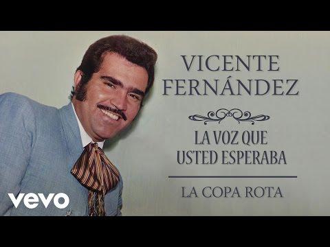 Vicente Fernández - La Copa Rota  - Cover Audio