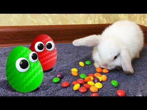 Мультики. Все серии. Киндер Сюрприз. Барбоскины, Маша и Медведь, Щенячий патруль. Surprise Eggs
