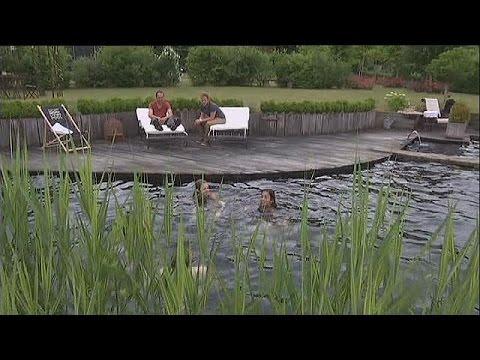 Les piscines naturelles de plus en plus prisées - science