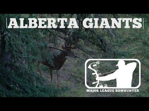 Alberta Whitetails - Huge Canadian Bucks At Close Range | Major League Bowhunter
