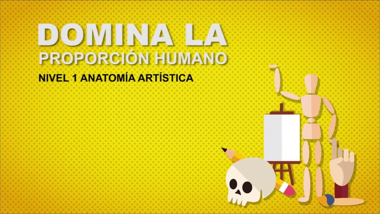 NIVEL 1 - Anatomía Artística - YouTube
