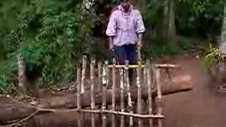 Traditional Guarani Armadillo Trap