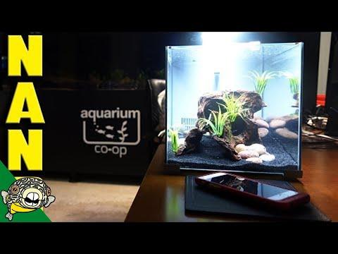 Live Stream about Nano Aquariums