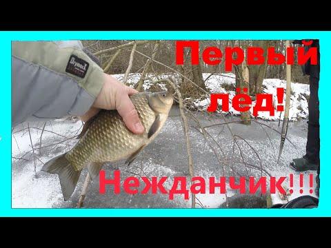 Зимняя рыбалка по первому льду 2020 #рыбалка #зимняя_рыбалка #зимняя_рыбалка_2020