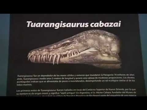 Туарангизавр