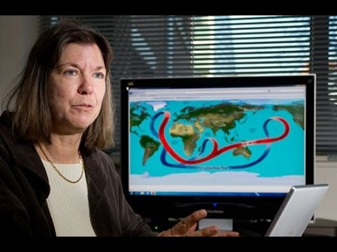 "Professor Judith Curry Quits over Climate ""Craziness"""