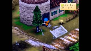 Harvest Moon: Back to Nature Let's Play [10/X]