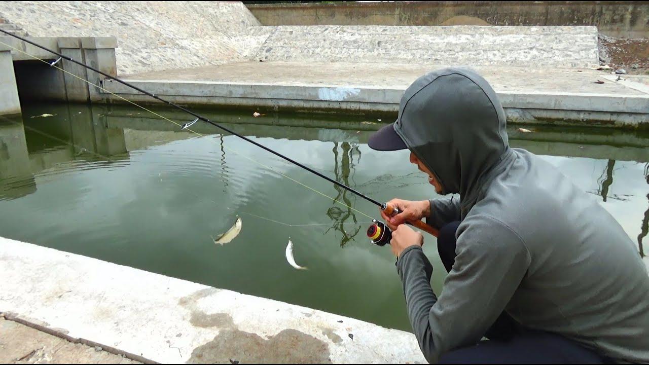 Lần Đầu Câu Cá Mương Bằng Thẻo Lưỡi Phản Quang Là Đây | Fish Hunting