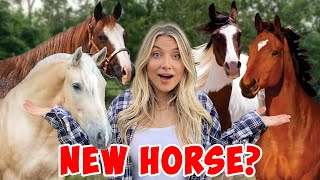 I Tried Out a NEW HORSE!