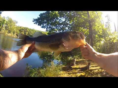 Trespassin' = Good Bassin' !  ---- Fishing A Closed Summer Camp