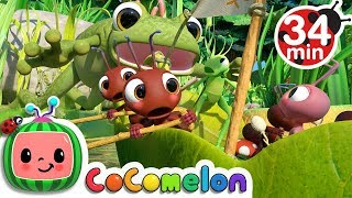 Row, Row, Row Your Boat (Ant Version) + More Nursery Rhymes & Kids Songs - CoComelon
