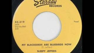 Sleepy Jeffers - My Blackbirds Are Bluebirds Now