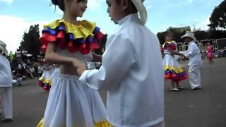 carmentea baile joropo