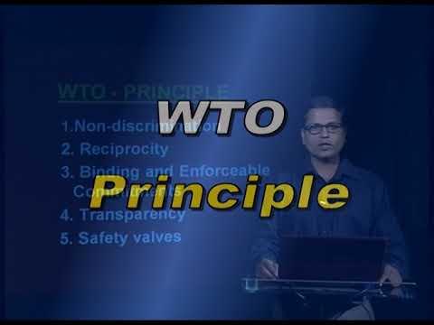 World Trade Organization   Part VI B