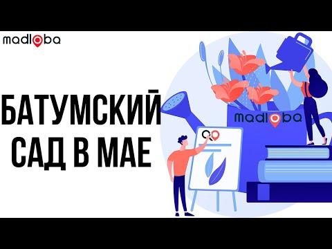 Ботанический сад Батуми в Мае - Розовый сад, Бамбуковый лес.Смотри про батумский ботанический сад