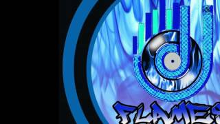 5 minute mix electro house dj flam3z