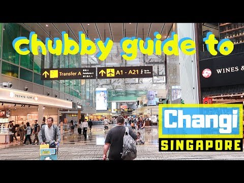 The Chubby Guide to Changi | Singapore's Incredible Airport
