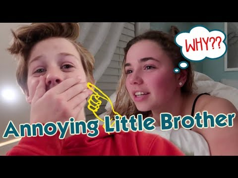 It's The Annoying Little Brother!!