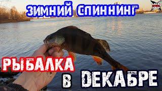 ЗИМНИЙ СПИННИНГ на Москва реке РЫБАЛКА В ДЕКАБРЕ Зимняя рыбалка 2019 2020
