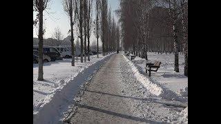 Декабрьский снегопад принес в Старый Оскол настоящую зимнюю сказку